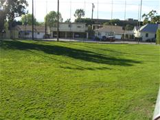 Image of a baseball field