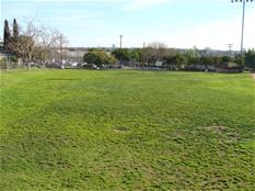 Image of a baseball field outfield