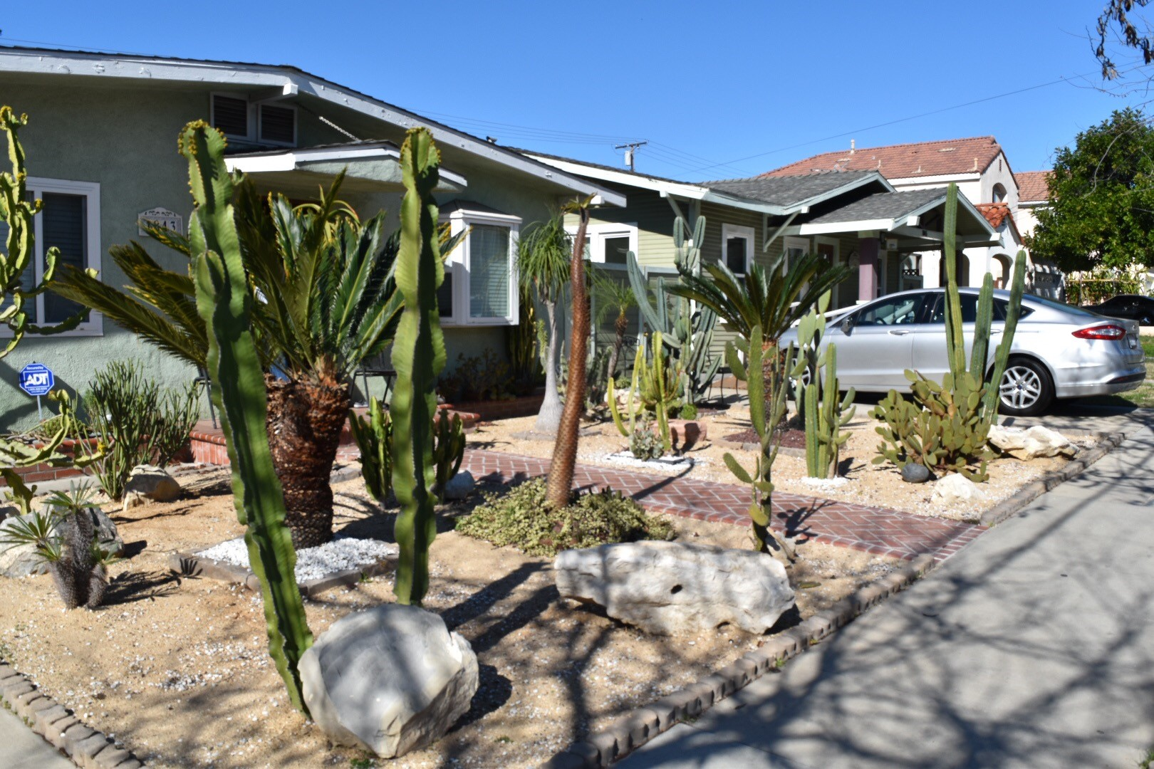 Cactus garden in front of a one story home