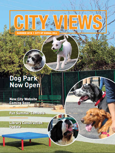 City Views Newsletter Cover Summer 2018