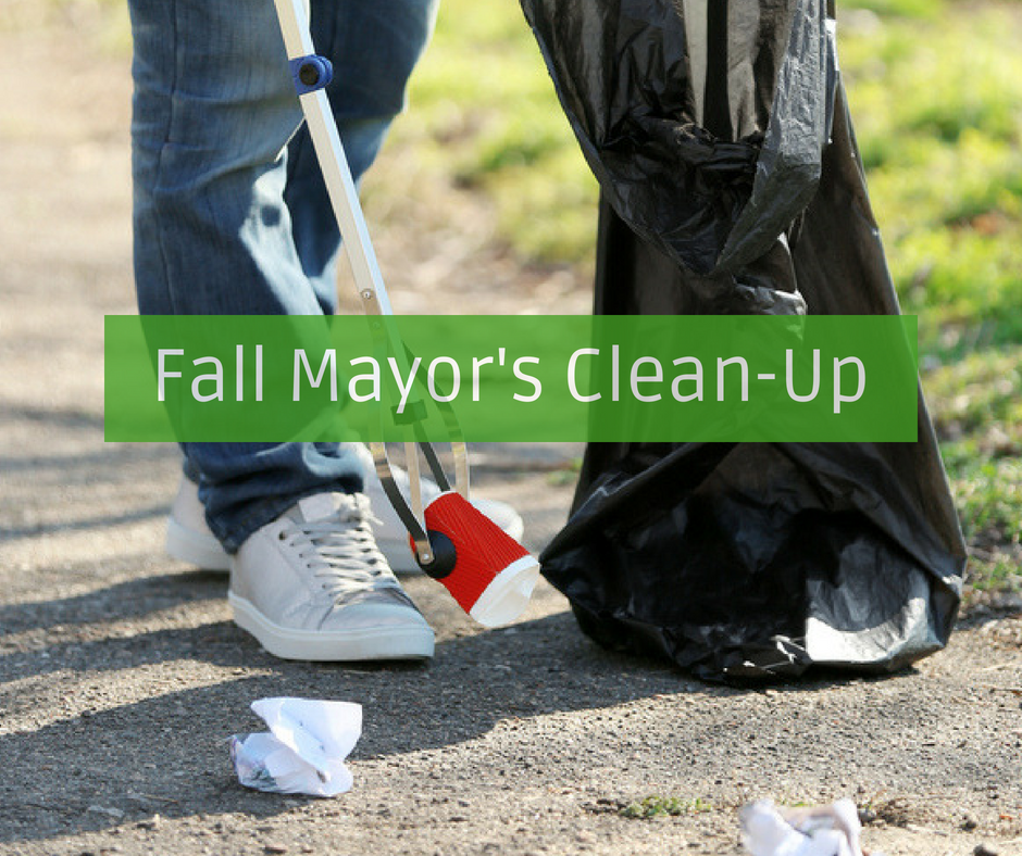 2018 Fall Mayors Clean Up