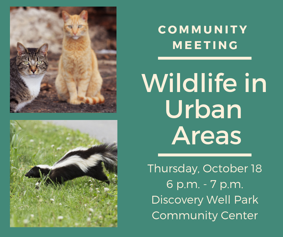 Wildlife in Urban Areas Meeting Thursday October 18 6 pm Discovery Well Park Community Center