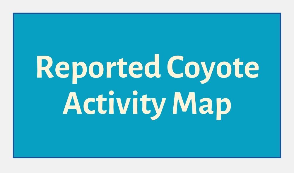 Reported Coyote Activity Map Button Blue Background Opens in new window